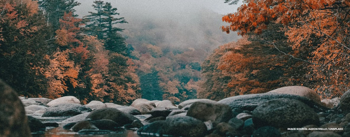 Best destinations for fall foliage